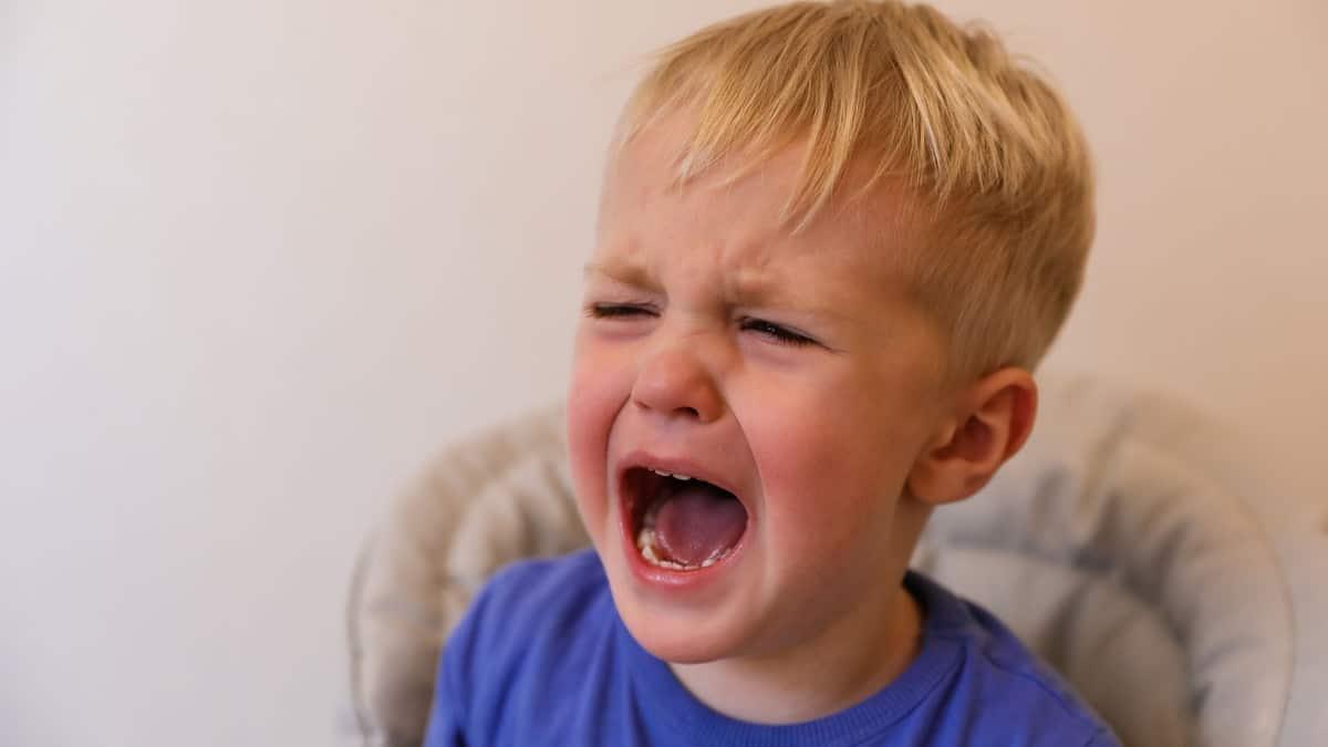 jak reagować na krzyk
